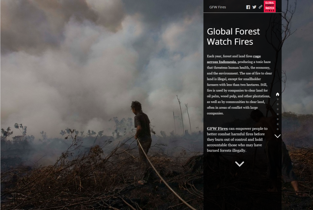 GFW-Fires Story Map
