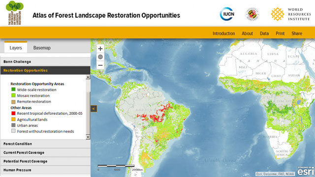 Forest Landscape Restoration Opportunities Map