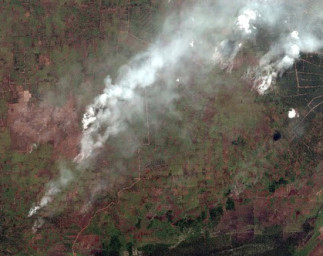 Global Forest Watch-Fires using High-Resolution Imagery to better respond to Fires