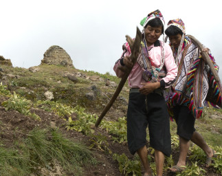Securing Land Rights for Indigenous Peoples and Communities