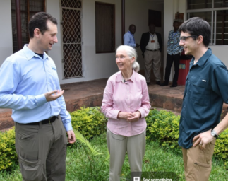Data to Decisions with the Jane Goodall Institute