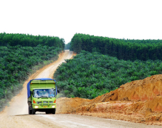Towards Zero Deforestation with GFW Pro