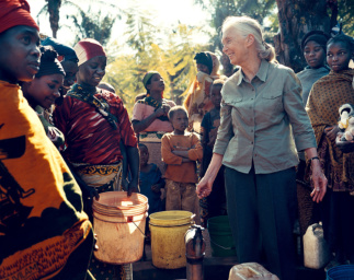 Highlighting Jane Goodall's Conservation Approach with a New Story Map