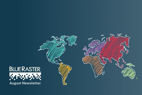Blue Raster Newsletters