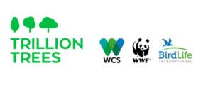 Trillion Trees organizations