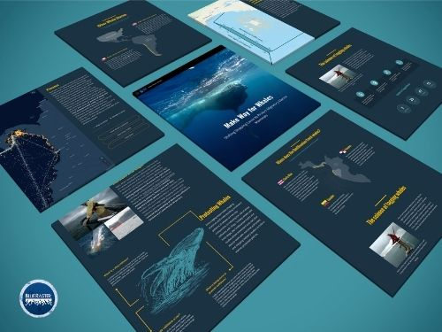Whale StoryMap images