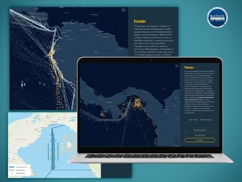 Smithsonian Whale StoryMap
